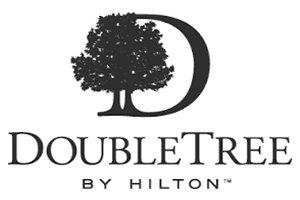 DoubleT.website.logo